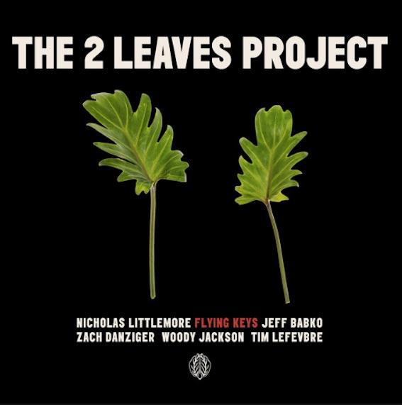 2 Leaves - Flying Keys